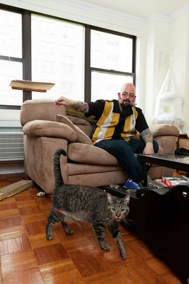 "Jackson Galaxy helps cats, such as Oliver, and cat owners solve behavior problems on Animal Planet's ""My Cat From Hell."" Photo: Animal Planet / Animal Planet"