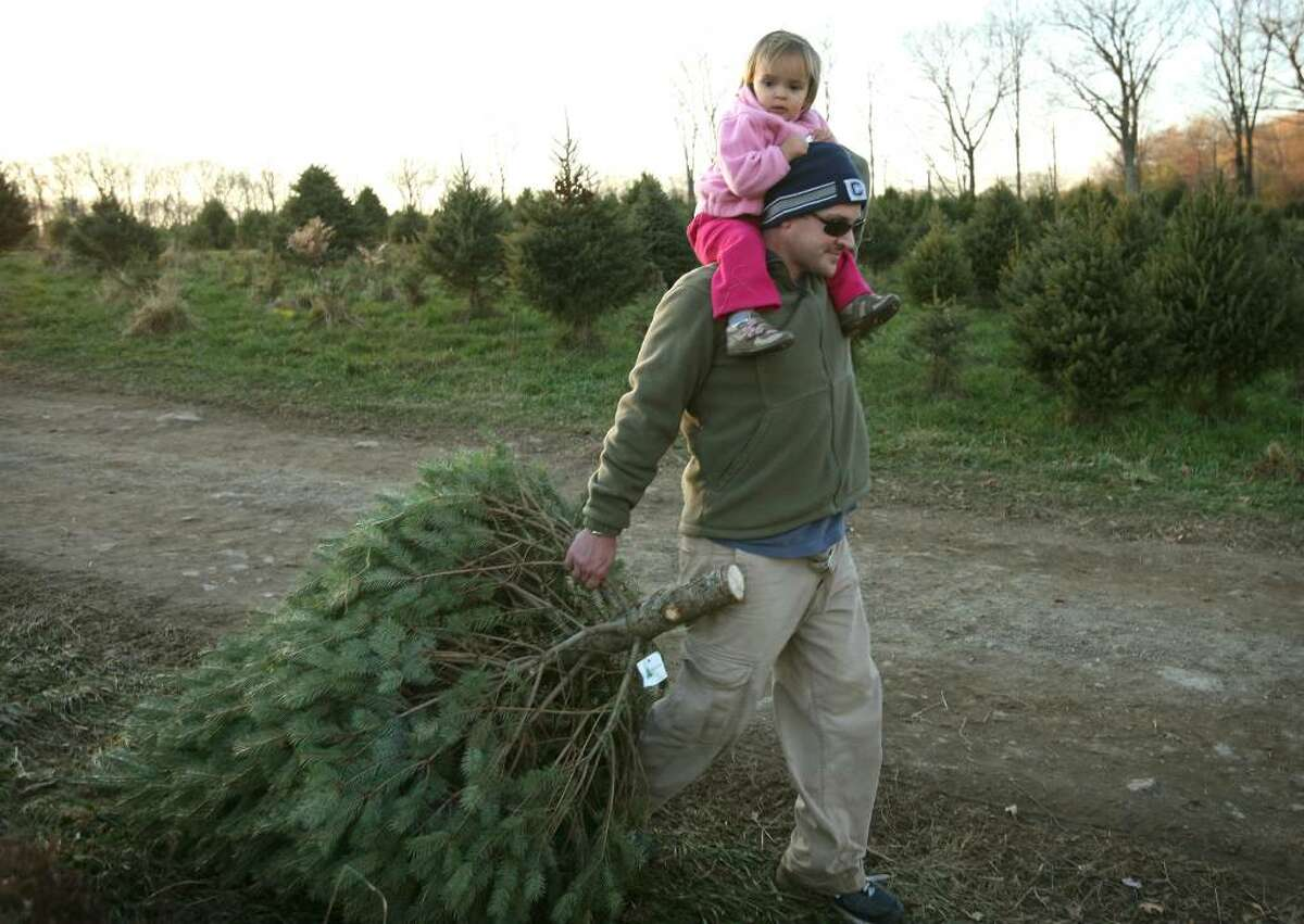 Greg Sanderson of Fairfield drags a Christmas tree in one hand while steadying his daughter Madeline, 20 months, with the other at Maple Row Tree Farm in Easton.