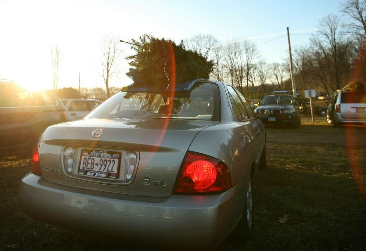 A car with New York State license plates prepares to head for home with a Christmas tree from Maple Row Tree Farm in Easton..