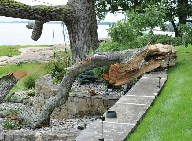 Tree limbs knocked down by the storm that hit Greenwich Sunday night near the beach at the end of Pilot Rock Lane in Riverside, Tuesday afternoon, Aug. 7, 2012. Photo: Bob Luckey / Greenwich Time