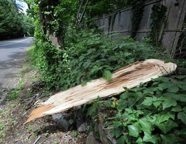 A snapped tree limb from the storm that hit Greenwich on Indian Head Road, Tuesday afternoon, Aug. 7, 2012. Photo: Bob Luckey / Greenwich Time