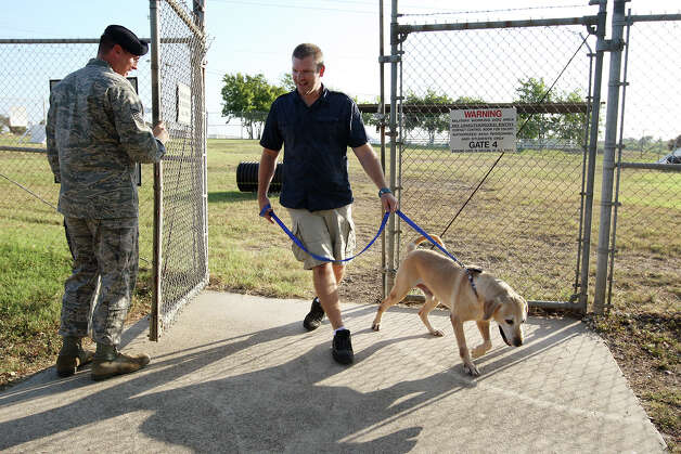 Military Working Dogs Adoption Coordinator TSgt. Joseph Null, left, opens the gate for retired military bomb-sniffing dog, Diego, an 8-year-old Yellow Labrador Retriever, and Logan Black at Lackland Air Force Base, Tuesday, Aug. 7, 2012. Black, a former Army sergeant, was able to adopt Diego after a five-year separation. Black handled the dog for two years prior to leaving the army in 2007. In 2006, they were deployed to Iraq where they were shaken up by an IED blast. Black and Diego were headed to Kansas City, where Black studies acting. Photo: Jerry Lara, San Antonio Express-News / © 2012 San Antonio Express-News