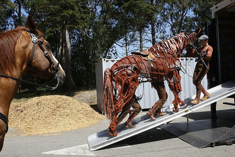 "Police horse Hammer wasn't impressed on meeting the puppet equine created for the play ""War Horse"" at Golden Gate Park. Photo: Liz Hafalia, The Chronicle"
