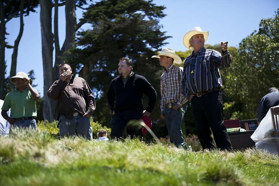 r-l: Mike Canaday, Blayne Morris, Brian C. Nettz, Armando Aceves and Rubens Otazu are talking about the best way for the goats to go over the Presidio Golf Course in San Francisco, Calif. on Tuesday, Aug 07, 2012. Photo: Sonja Och, The Chronicle