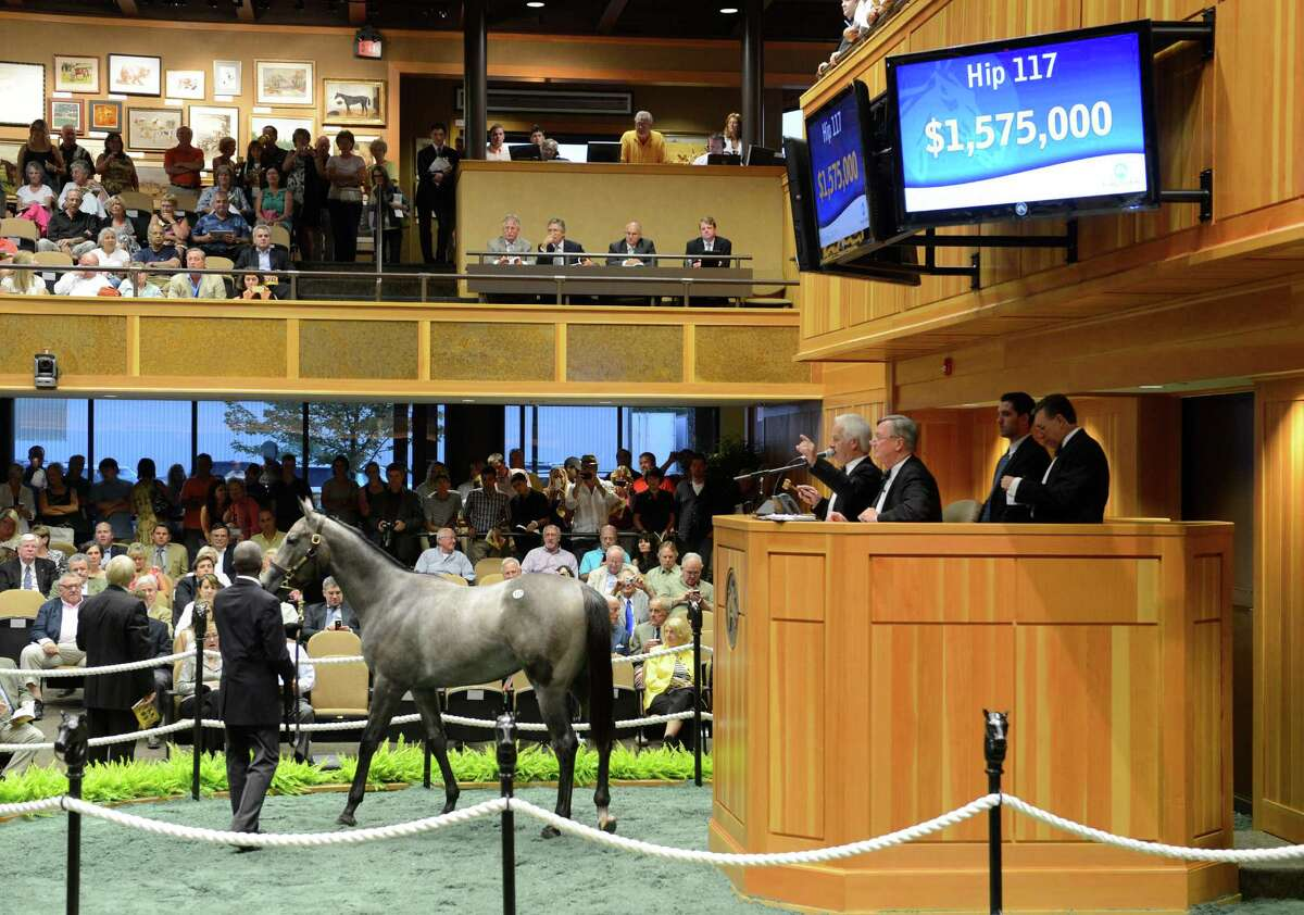 A gray/roan filly by the sire Medaglia d'Oro sold for $1.575 million at the second session of the Fasig Tipton Yearling Sales in Saratoga Springs, N.Y. August 7, 2012. (Skip Dickstein/Times Union)