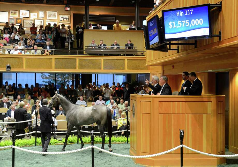 A gray/roan filly by the sire Medaglia d'Oro sold for $1.575 million at the second session of the Fasig Tipton Yearling Sales in Saratoga Springs, N.Y. August 7, 2012.    (Skip Dickstein/Times Union) Photo: Skip Dickstein