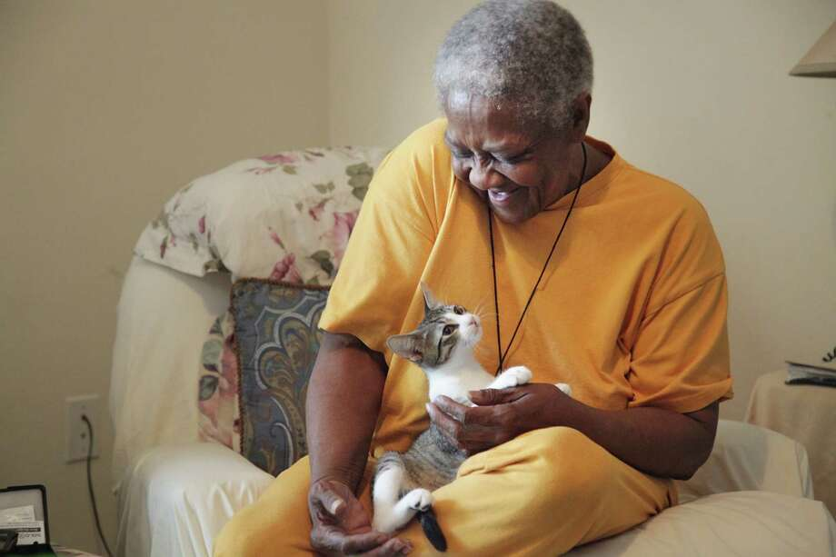 Ann Smith, 68, smiles after her four month old cat, Poo Poo, playfully bites her on Monday, Aug. 6, 2012, in Houston.  Smith receives aid to feed her pet through the Interfaith Ministries' Meals on Wheels program for animals. Photo: Mayra Beltran, Houston Chronicle / © 2012 Houston Chronicle