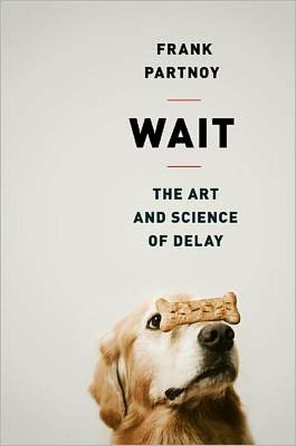 """Wait,"" by Frank Partnoy Photo: Xx"