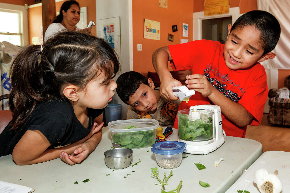 Shelsie Cadena (6, left) and Samie Hernandez (4) watch Angel Herrera (7) squeeze garlic into a food processor filled with basil leaves at Time Dollar Community Connections, 2806 W. Salinas, on Aug. 3, 2012. Children participating in a summer program there were not only learning to garden, but getting math lessons in the process by measuring basil plants and counting leaves on the plants and comparing the results to what they got earlier in the summer. MARVIN PFEIFFER/ mpfeiffer@express-news.net