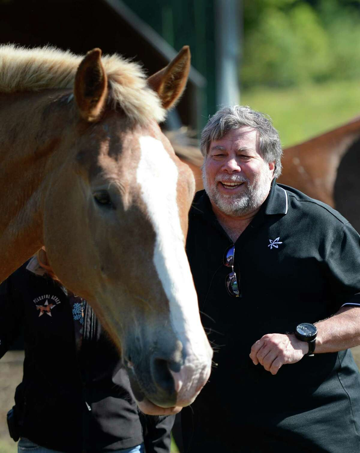 """Steve Wozniak, co-founder of Apple Computer meets """"Woz"""" a horse named for him that was rescued from a kill pen and now resides on the Peaceful Acres Horse Farm in Patersonville, N.Y. June, 13, 2012. Peaceful Acres Horse Farm is a farm that rescues horses of all breeds and rehabilitates them with the aid of donations and volunteers. They also incorporate human rehabilitation with animals as part of their mission. (Skip Dickstein / Times Union)"""