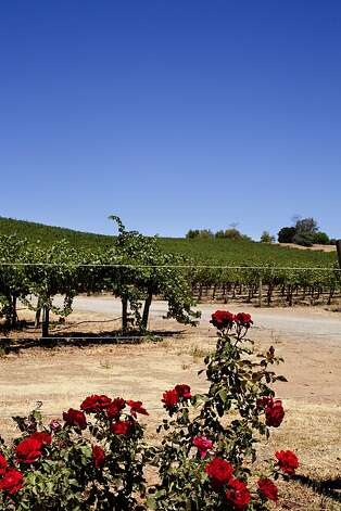 Rio-Lovell Estate Winery in Livermore, Calif., August 1, 2012. Jason Henry/Special to The Chronicle Photo: Jason Henry, Special To The Chronicle