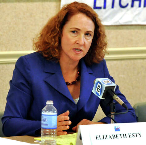 Elizabeth Esty, Democratic candidate for the 5th Congressional District, speaks during a debate at the Oliver Wolcott Library in Litchfield Saturday, Aug. 4, 2012. Photo: Michael Duffy / The News-Times