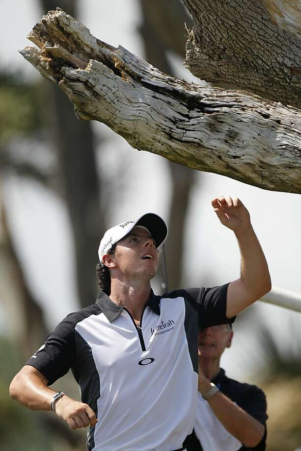 Rory McIlroy finds his ball lodged in an opening in a tree on the third hole. He managed to save par. Photo: Evan Vucci, Associated Press