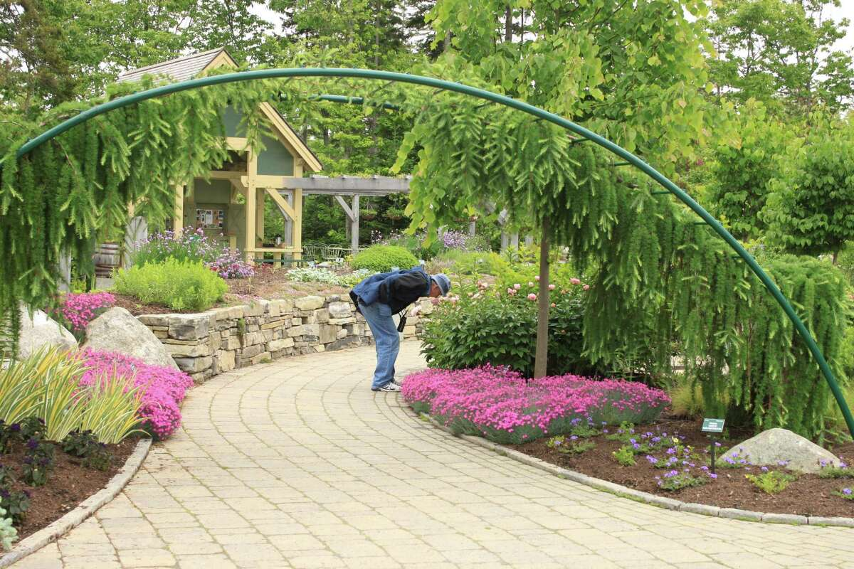 Sweet-smelling flowers perfume the air of the Lerner Garden of Five Senses at Coastal Maine Botanical Gardens.