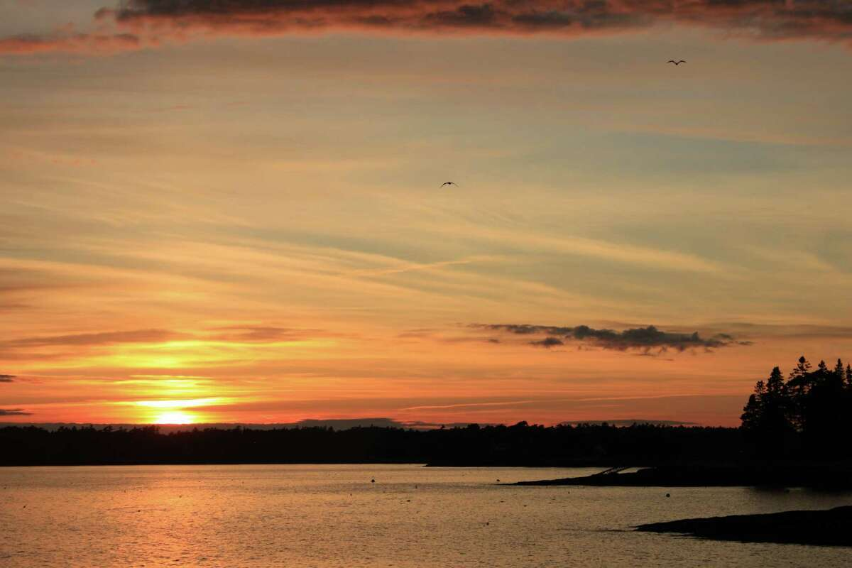 Gulls fly to a roost as sunset tints sky and water at Boothbay Harbor, Maine.