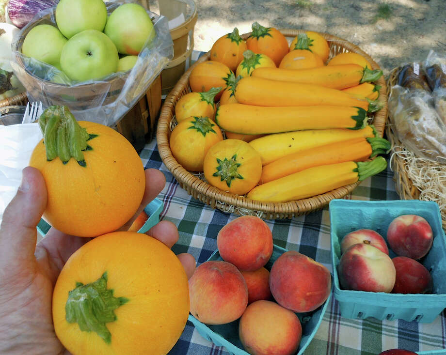 Squash samples in hand, produce from the Aspetuck Valley Apple Barn on offer Sunday at Christie's County Store's farmer market included freshly harvested along with nectarines, zucchini and peaches. Photo: Mike Lauterborn / Westport News contributed