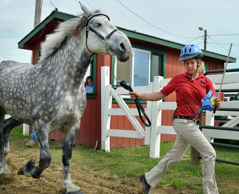 "Lexy Eaton, 14, of Apalachin leads her Percheron ""Star e Skye"" from the ring after winning a blue ribbon in the Draught Horse Jr. Showmanship event at the Altamont Fair Tuesday Aug. 14, 2012.  (John Carl D'Annibale / Times Union) Photo: John Carl D'Annibale / 00018832A"