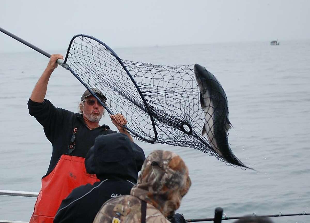Tony Broglio with a clean, quick net job on big salmon.