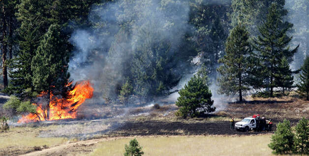Firefighters stand in view of a tree on fire Wednesday, Aug. 15, 2012, near Cle Elum, Wash. Crews fighting the large blaze in central Washington hope to increase containment levels by Wednesday evening, but are keeping a wary eye on weather conditions later in the week. The fire burning near Cle Elum has burned dozens of homes and caused about 900 people to evacuate. Photo: Elaine Thompson / Associated Press