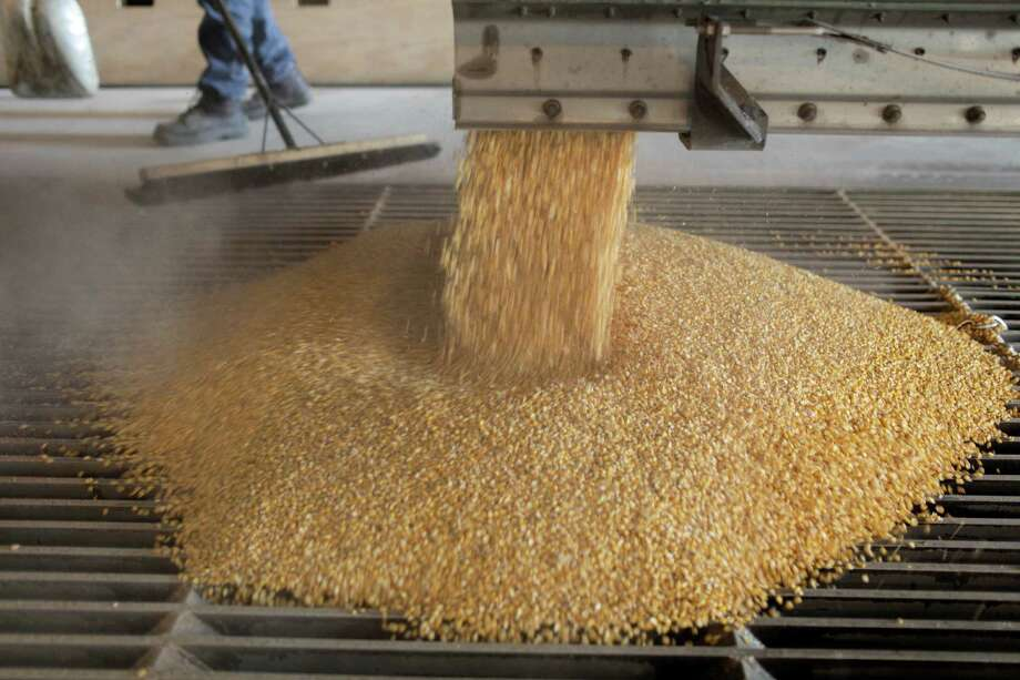 Corn is dropped out of a truck at the East Kansas Agri-Energy ethanol plant in Garnett, Kan. The economic case for ethanol is weak. Photo: Steve Hebert, New York Times / NYTNS