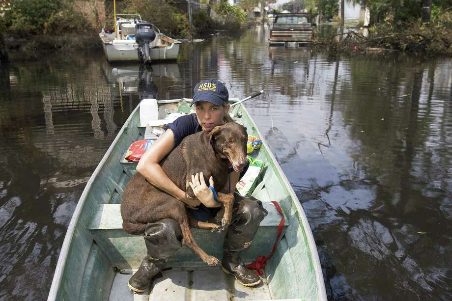 Jane Garrison cradles a dog rescued from a home in the Garden District of New Orleans after Hurricane Katrina. Under current law, animals are considered property, but a Texas case could allow recovery of damages for their sentimental value. Photo: NORMAN NG / KANSAS CITY STAR