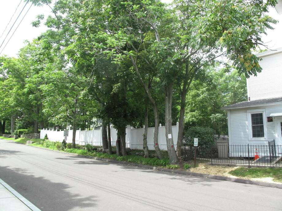 Trees on 65 Church Street are marked for destruction at a cost of $525 to the town. Aug. 21, 2012. Photo: Tyler Woods