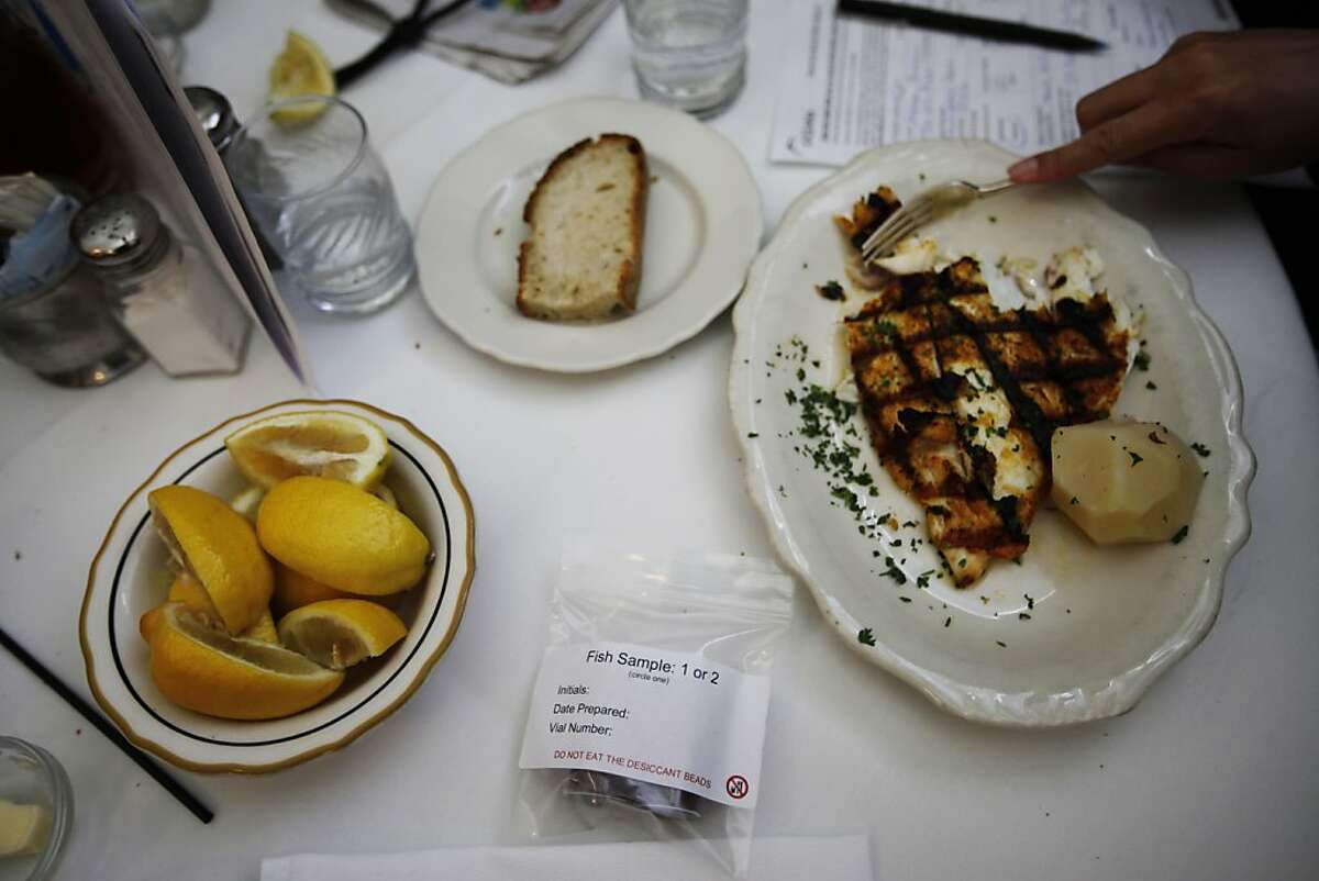 Ashley M. Blacow, Pacific Policy and Communications Coordinator at Oceana, eats the Local Halibut Filet after taking some samples of it at a restaurant in San Francisco, Calif. on Wednesday, Aug 15, 2012.