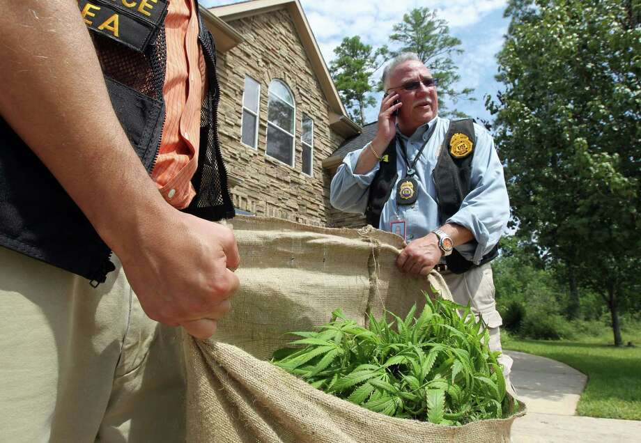 """DEA Special Agent in Charge Javier Peña helps carry pot seized from a """"grow house"""" in Spring. Dozens of homes, rented by Vietnamese traffickers, were raided. Twenty-two people reportedly were detained. Photo: James Nielsen / © Houston Chronicle 2012"""