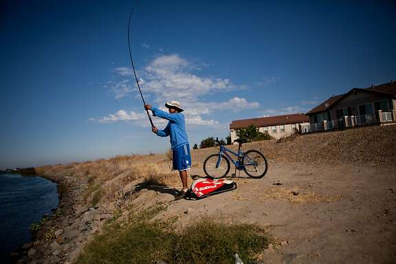 Dexter Sarmiento fishes from a levee separating the Sacramento-San Joaquin River Delta's Pixley Slough from the Spanos Park subdivision in Stockton, Calif., August 17, 2012.