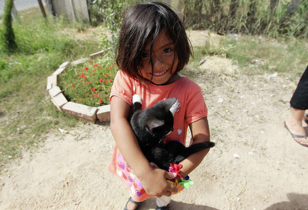 "A young girl holds her kitten in the North San Carlos colonia in an area of Edinburg, Texas. The area has seen a dramatic increase in the amount of recipients receiving food benefits via the Lone Star Card - a debit card issued by the Texas Health and Human Services Commission. One of the reasons for the rise is in part due to the efforts of the organization, Migrant Health Promotion, and their ""promotoras"" - individuals who work with many families in border communities like Edinburg. The promotoras help the families - many of whom the adults are undocumented but their children are U.S. citizens - to get proper healthcare for the children and to get aid so that the families can afford food in their homes. Photo: Kin Man Hui, San Antonio Express-News / ©2012 San Antonio Express-News"