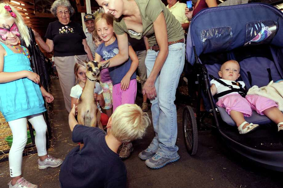 Donna Gilis, center, of  Greenwich lets children meet her dwarf goat as 1-year-old Allison Houde of Glens Falls relaxes in her stroller , right, during the  Washington County Fair in Greenwich, NY Wednesday Aug. 22, 2012. (Michael P. Farrell/Times Union) Photo: Michael P. Farrell