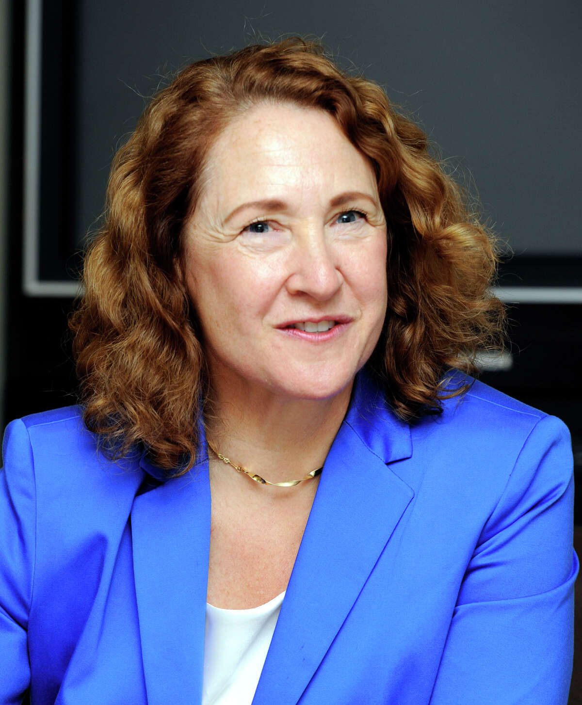 Elizabeth Esty, Democratic candidate for Congress in the 5th District