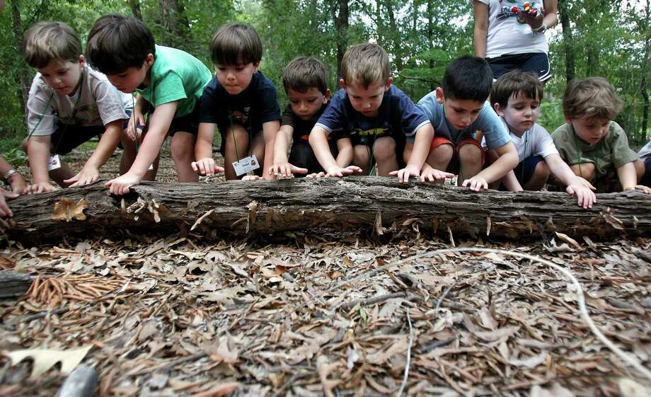 Visit the Houston Arboretum & Nature Center, which is full of exhibits. Photo: Johnny Hanson / © 2011 Houston Chronicle