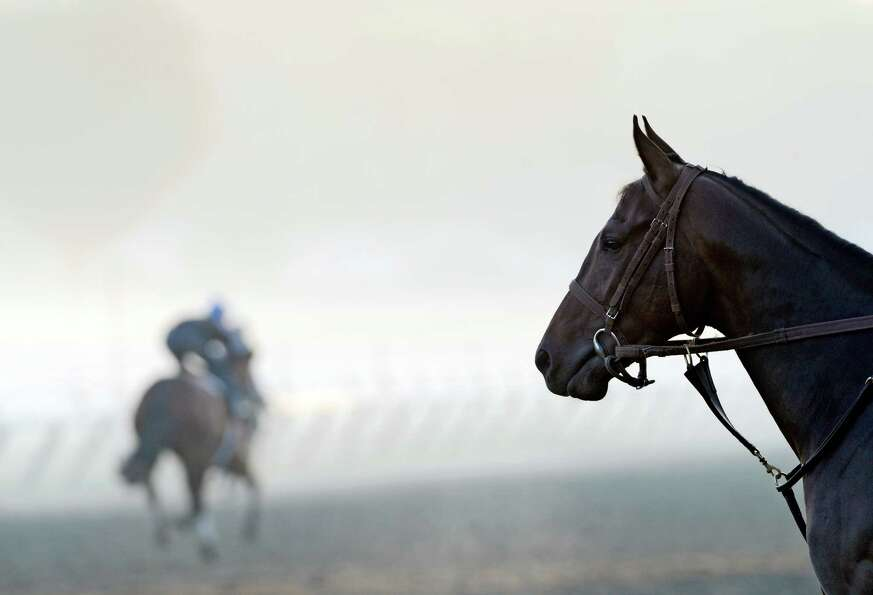 A morning mist hangs over the main track Friday at Saratoga Race Course in Saratoga Springs. The his
