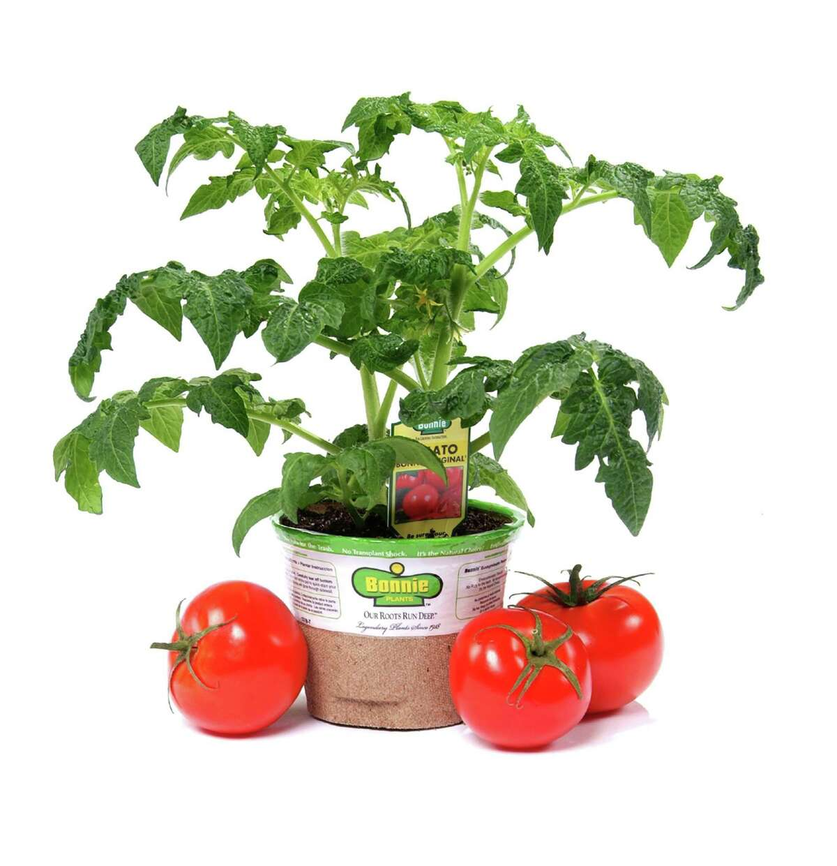 Bonnie Plants trucks vegetables and herbs in biodegradable pots to retail garden centers.