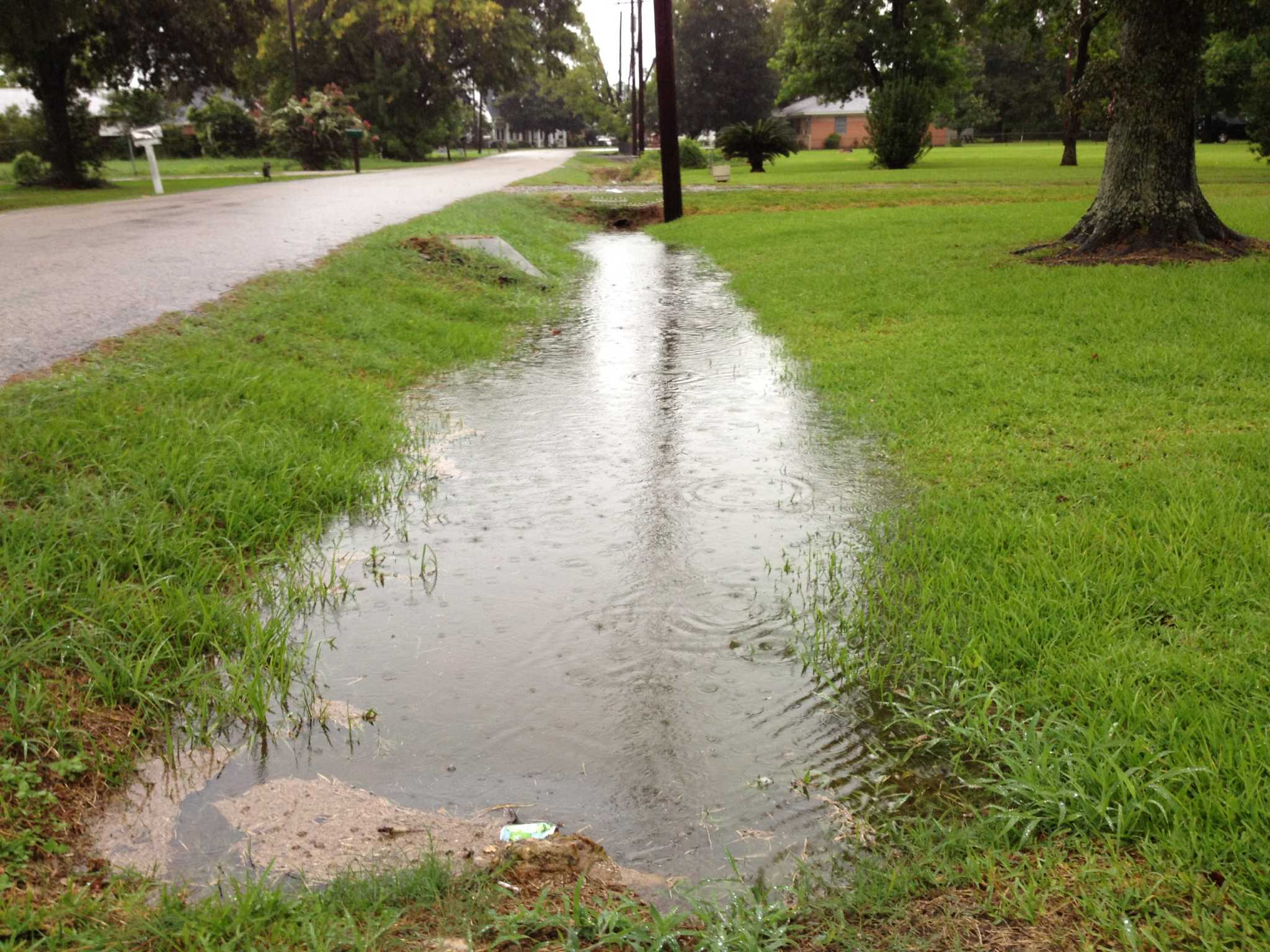 How Can I Get Rid Of Standing Water In Neighborhood