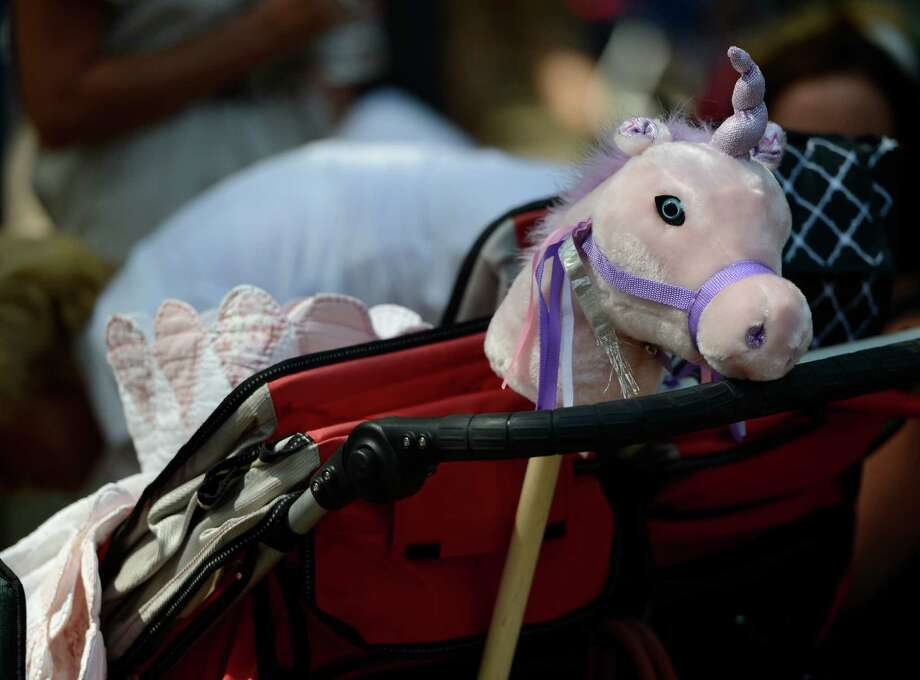 One horse that is sure to have a relaxing day on Travers Day at the Saratoga Race Course  in Saratoga Springs, N.Y. Aug. 25, 2012.   (Skip Dickstein/Times Union) Photo: Skip Dickstein / 00019010A