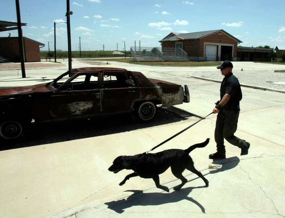 Arson investigator Justin Davis' partner, Kai, is one of 33 dogs that support local law enforcement and fire fighters and play a large part in providing safety for San Antonio residents Photo: Helen L. Montoya, San Antonio Express-News / SAN ANTONIO EXPRESS-NEWS