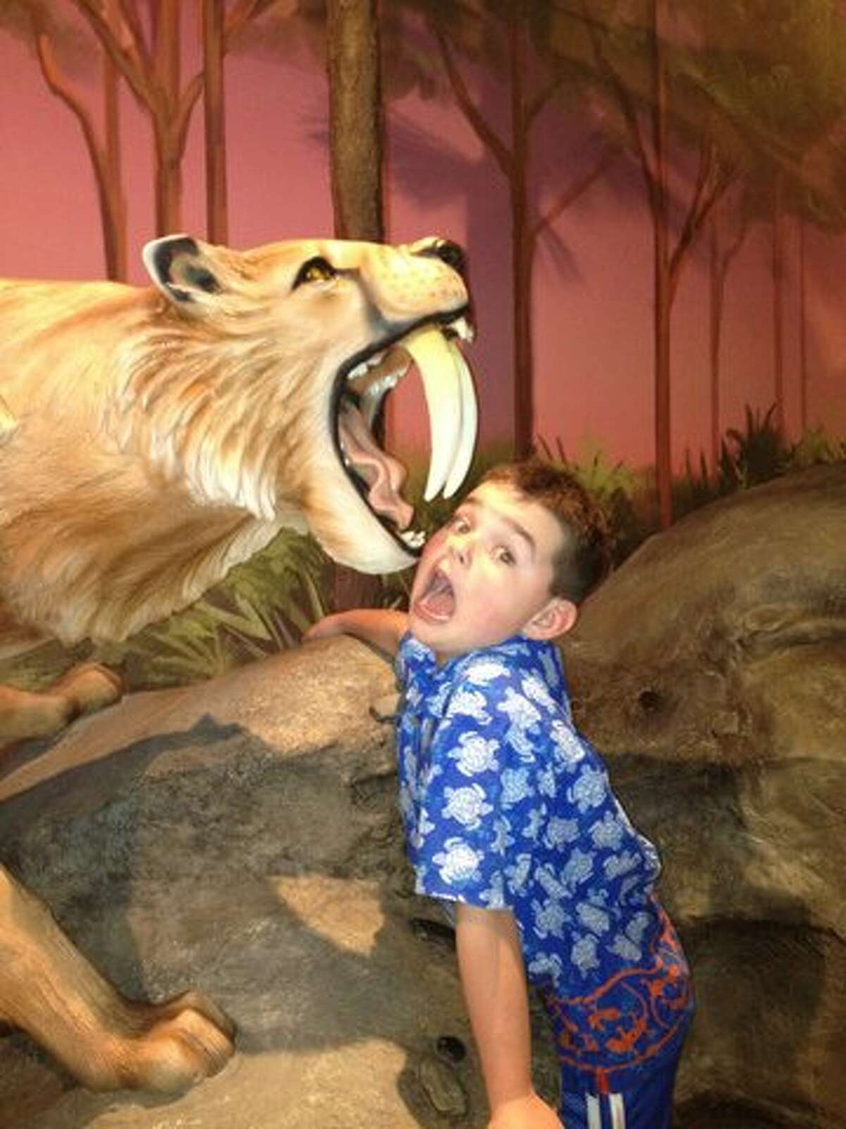 Ken and Grace Wakeman of Colonie watch Grandson Patrick Monahan of Colchester VT as he is about to get consumed by a Saber-toothed tiger. (Ken Wakeman, Colonie) It was taken at The Fort Lauderdale Museum of Science and Discovery