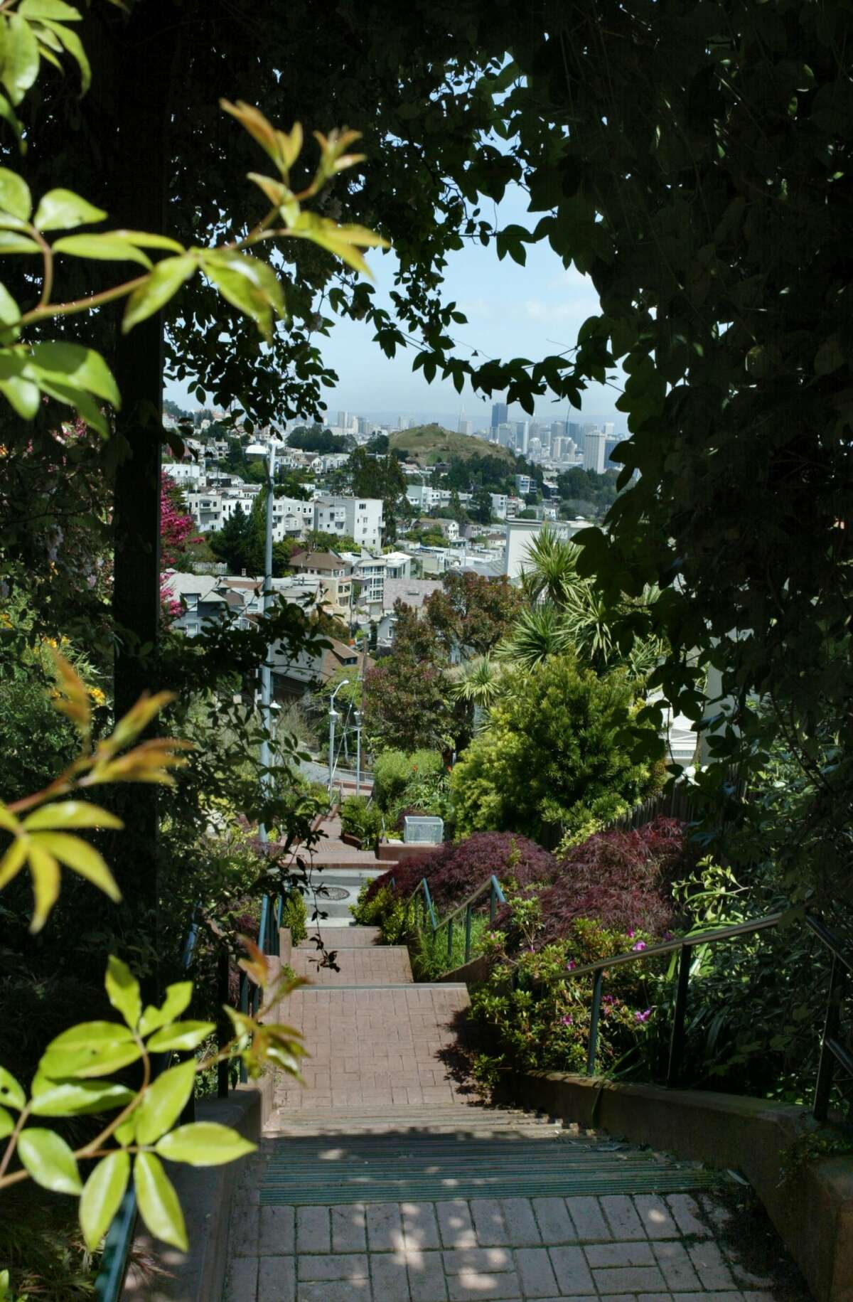 A short walk from the Saturn Street stairs, the Vulcan Stairway is well-kept and nearly two blocks long, making for a good walk.