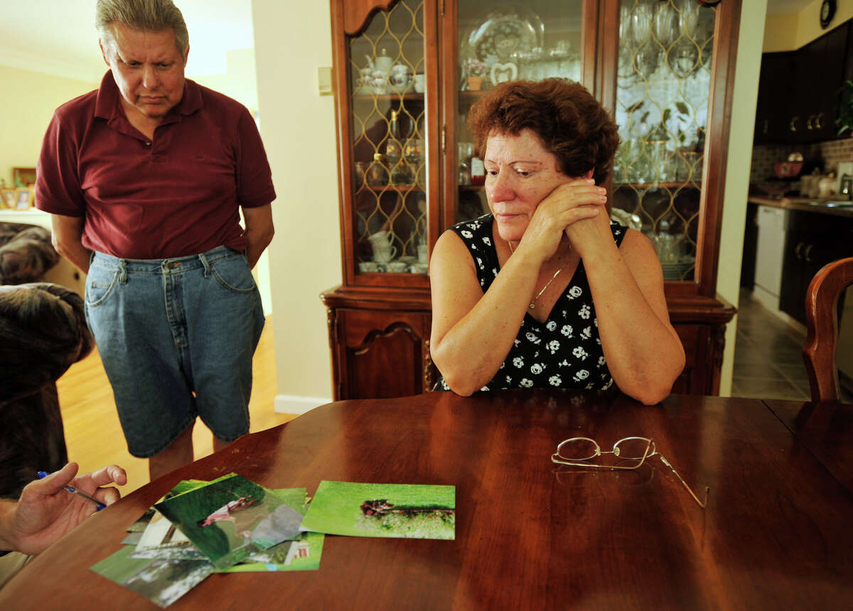 John Costa and his wife, Anamaria Costa, go through photographs of their dog, Diamond, who they say was attacked by a coyote outside their home on Tamanny Trail in Danbury. Photographed on Tuesday, Aug. 28, 2012.