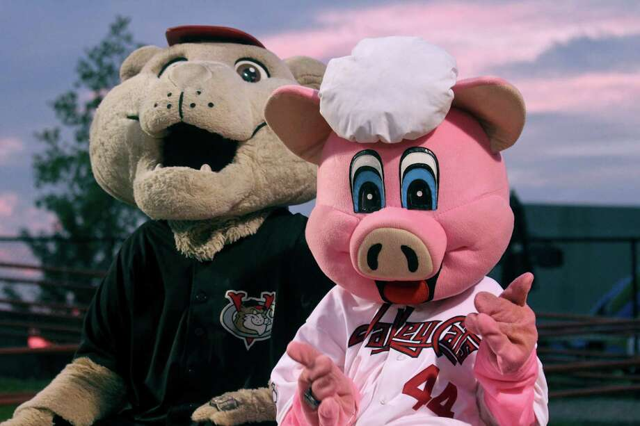 Michael Springstead, left, and his son, Mickey Springstead, right, during their performances as mascots at a ValleyCats game on Saturday, August 25, 2012. (Erin Pihlaja / Special To The Times Union).