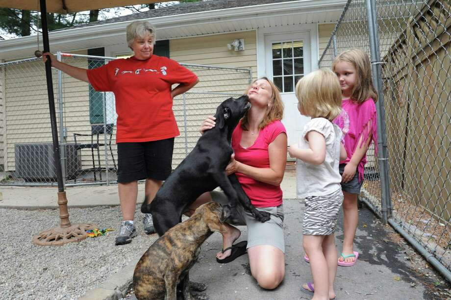 Allyson Halm, left, president of Greenwich-based Adopt-A-Dog, watches while Jennifer Duggen with her daughters Sara, 3, and Emma, 5, look at puppies Tigger, brown, and Moose, black, at the Adopt-A-Dog shelter, in Armonk, N.Y., Saturday, Aug. 4, 2012. Photo: Helen Neafsey / Greenwich Time