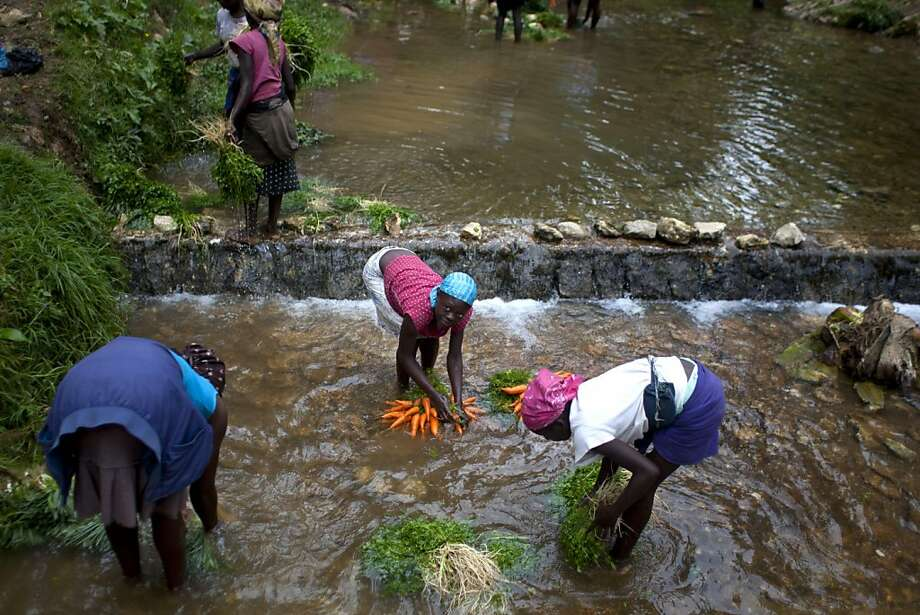 Vendors wash vegetables in a river at La Visite National Park, Haiti. A police operation to evict farmers living in the park is now under investigation after four squatters were shot to death. Photo: Dieu Nalio Chery, Associated Press