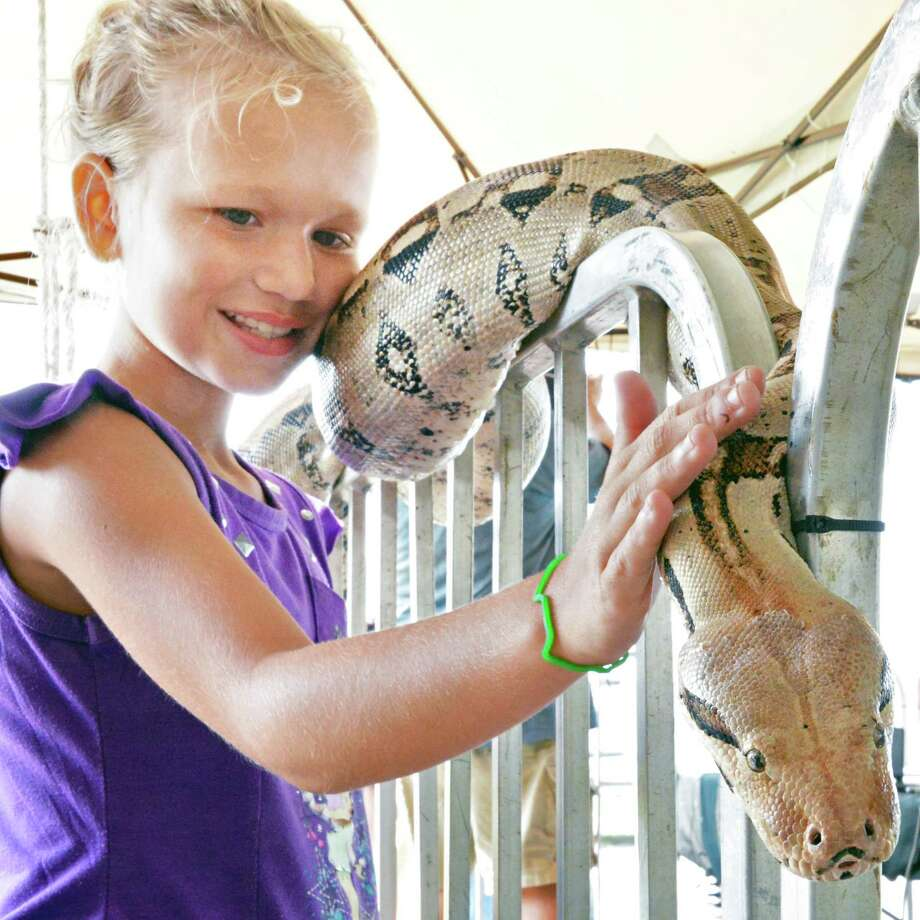 Caterina Vosburg, 10, of Colbrook pets a boa constrictor at Jungle Habitat at the Fonda Fair  Thursday Aug. 30, 2012.  (John Carl D'Annibale / Times Union) Photo: John Carl D'Annibale / 00019043A