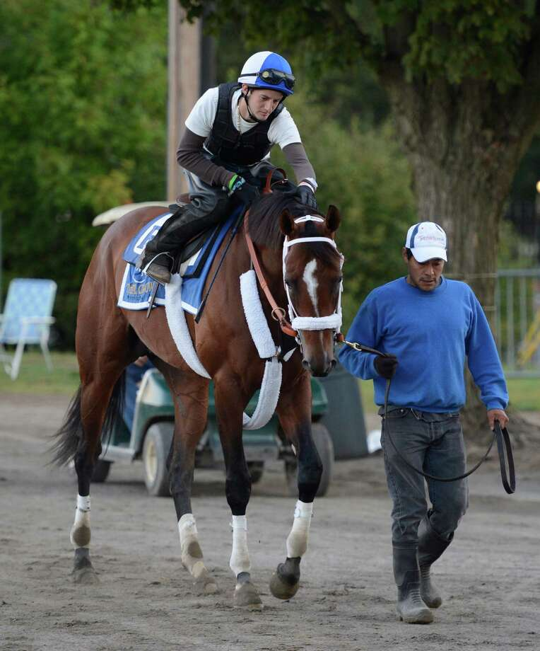 Woodward entrant Mucho Macho Man goes out for exercise on the main track at the Saratoga Race Course in Saratoga, N.Y.  in preparation for Saturday's Woodward Stakes.   (Skip Dickstein/Times Union) Photo: Skip Dickstein