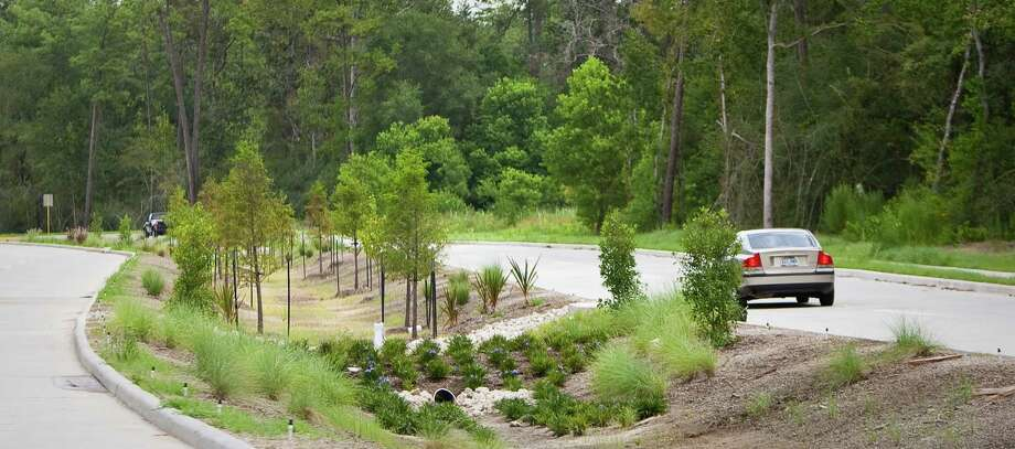 "A specially designed median is being used for flood control on Birnamwood Drive in Spring. Known as a ""bioswale,"" it uses plants, rocks and gently sloped landscaping to reduce flooding and naturally filter rainwater before it reaches the bayous. Photo: Nick De La Torre / © 2012  Houston Chronicle"
