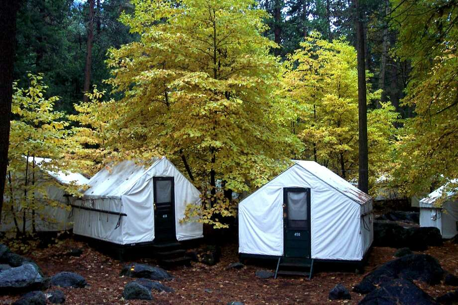 "In this undated photo provided by DNC Parks and Resorts at Yosemite, Inc., are tent cabins in the fall at Yosemite National Park in California. Yosemite officials are expanding their efforts notify visitors to a complex of tent cabins who may have been exposed to a rare but potentially deadly rodent-carried virus. Officials said Wednesday they have notified 2,900 visitors who stayed in the Curry Village ""Signature Cabins"" since mid-May, up from 1,700 initially notified. (AP Photo/DNC Parks and Resorts at Yosemite, Inc.) Photo: Associated Press"