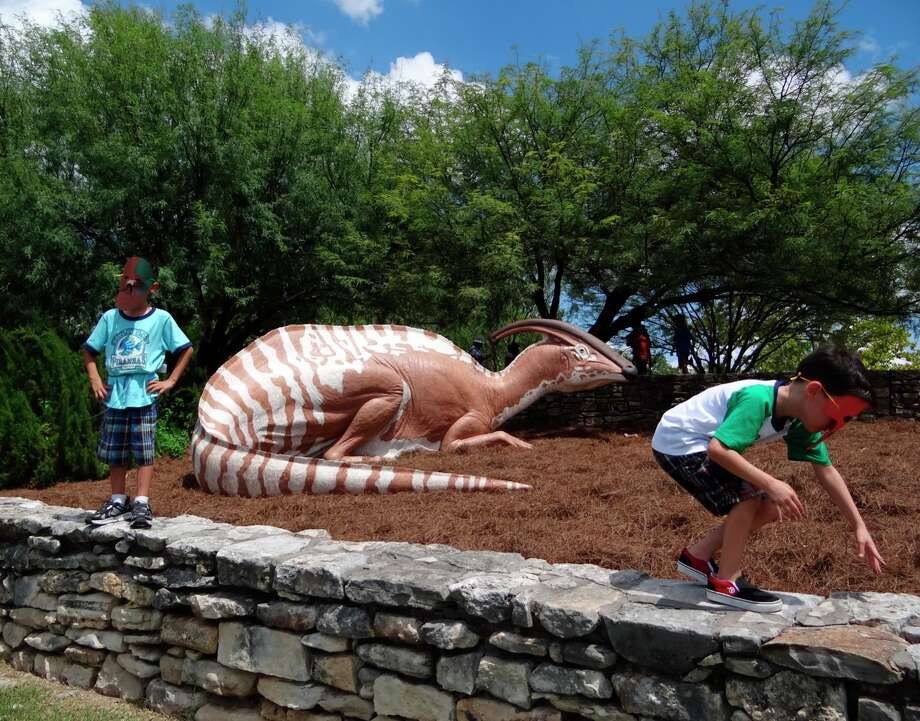 Marcus Lodge, 7, left, and his twin brother, Samuel, play by a replica of a parasaurolophus during opening day of the Dinosaur Stampede at the San Antonio Botanical Garden on Saturday, Sept. 1, 2012. Over 30 dinosaurs and other creatures are on display until the end of the year. Photo: Billy Calzada, Express-News / San Antonio Express News