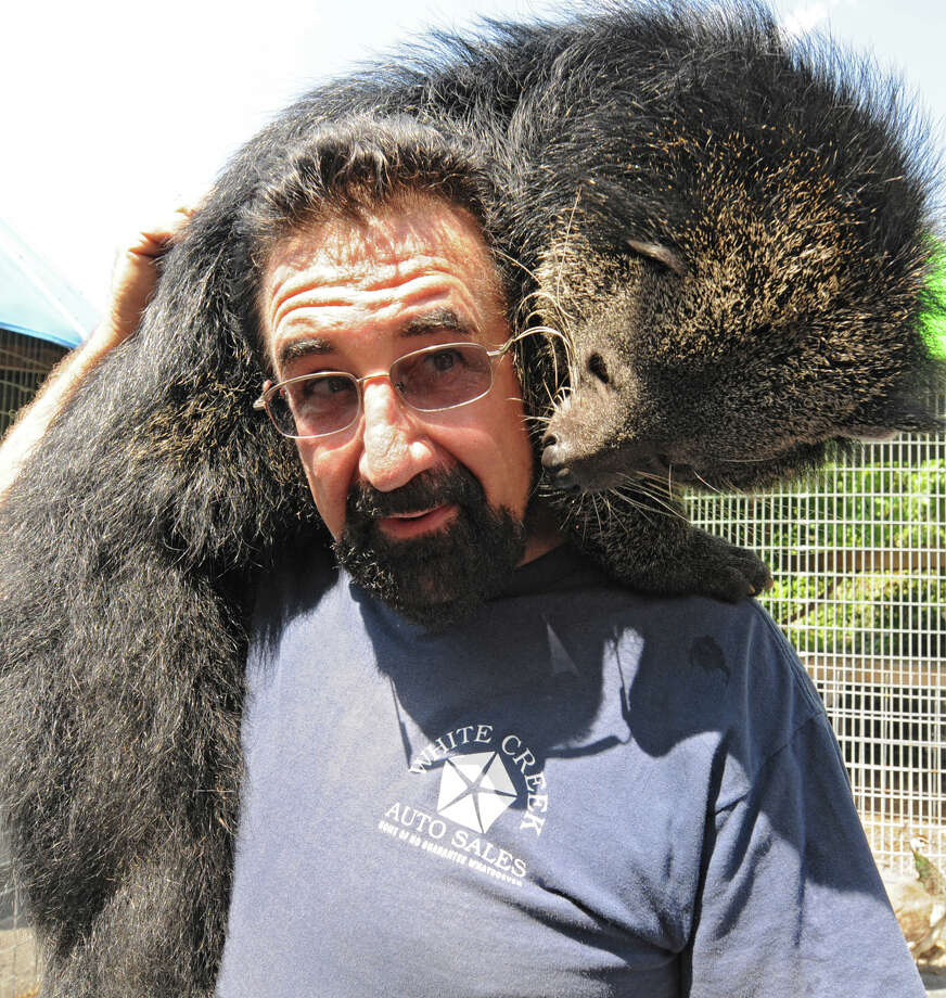 Zoo owner Jeff Ash carries a Binturong on his shoulders at the Ashville Game Farm and Exotic Zoo on Tuesday, July 24, 2012 in Greenwich, N.Y. (Lori Van Buren / Times Union) Photo: Lori Van Buren